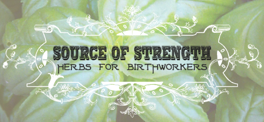 Source of Strength: Herbs for Birthworkers